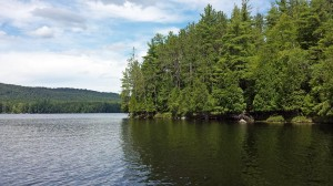 Cove on Lower Saranac Lake