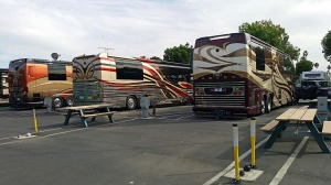 L-R Prevost Marathon, Featherlite and Millenium coaches