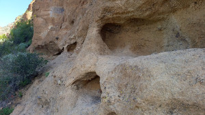 Wind erosion on a cliff by the Wind Cave trail