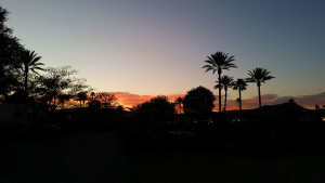 Our last sunset at Golden Village Palms