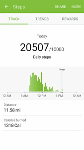 That's a lot of steps