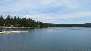 Cove on Lake Almanor