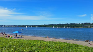 Beach area and sailboats on the river