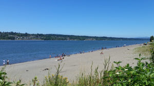 Columbia River beach
