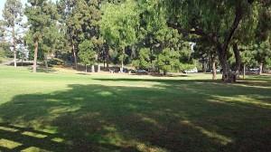 Picnic area in Presidio Park