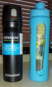 Cupanion vacuum insulated bottle and infuser