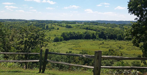 Overlook on the Natchez Trace Parkway