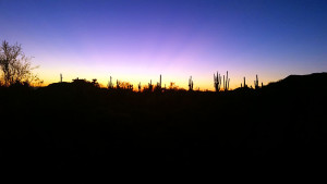 Beautiful sunset from our site at Usery Mountain