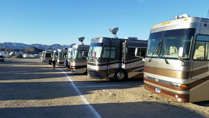 A row of Alpine Coaches getting ready to depart