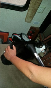 Okay Ozark, here comes the vacuum